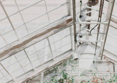 architecture-beautiful-botanic-1034902